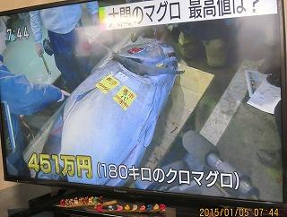 マグロ451万円
