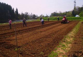 西瓜畑・1