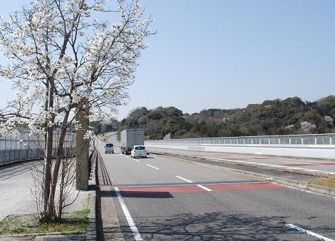 高隆寺大橋