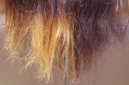 美容室 ビビリ毛