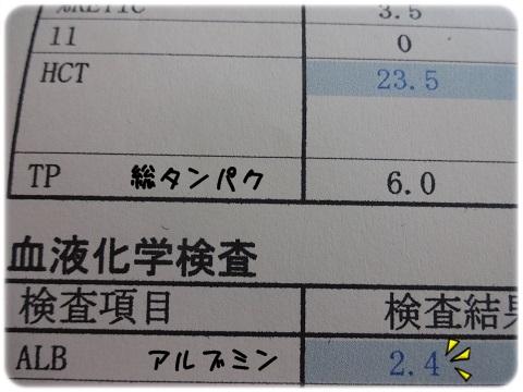 2012_01011964.jpg