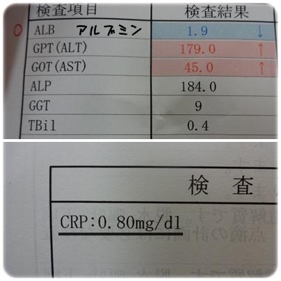 H270218 (2)