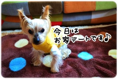 ラピスくんいらっしゃい♪ (2)
