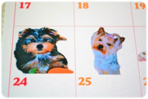 マイ365カレンダー (5)