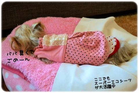 寝たきり (2)