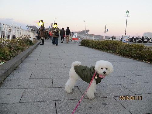 横浜夕陽9