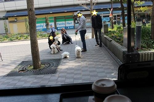 神戸マッシュ16
