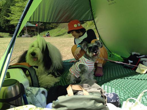 テントでまったり