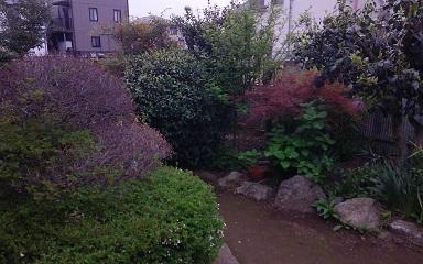 大宮の庭3