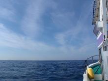 Coral Queen 海日記