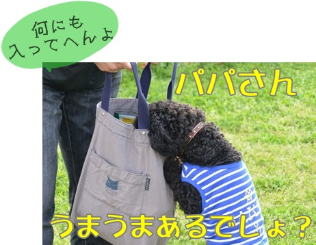 RDSC_5439_R.jpg