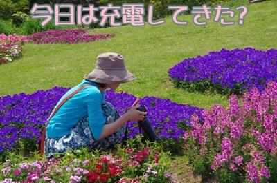 RK52D8889_R.jpg