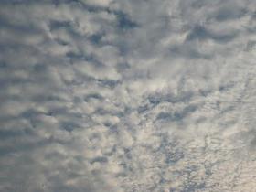 うろこ雲0821