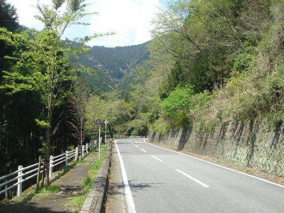 ヤビツ峠の林道
