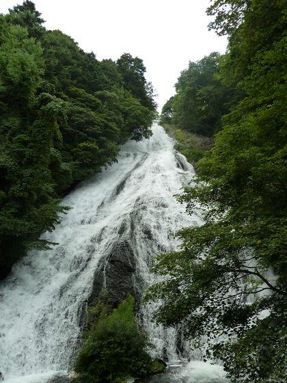 観瀑台から眺める湯滝