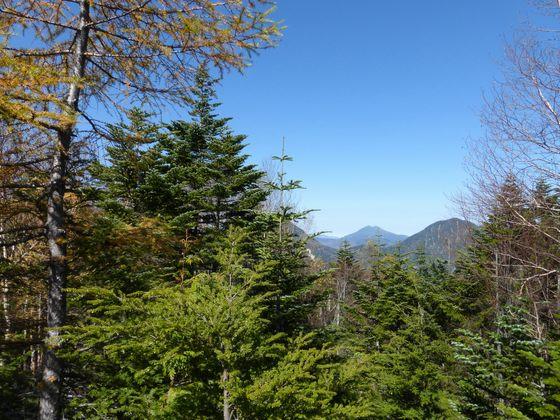 散策コースから眺める燧ケ岳