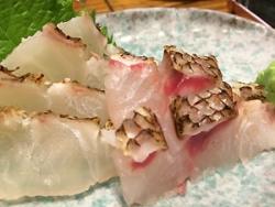 真鯛の刺身♪in上野