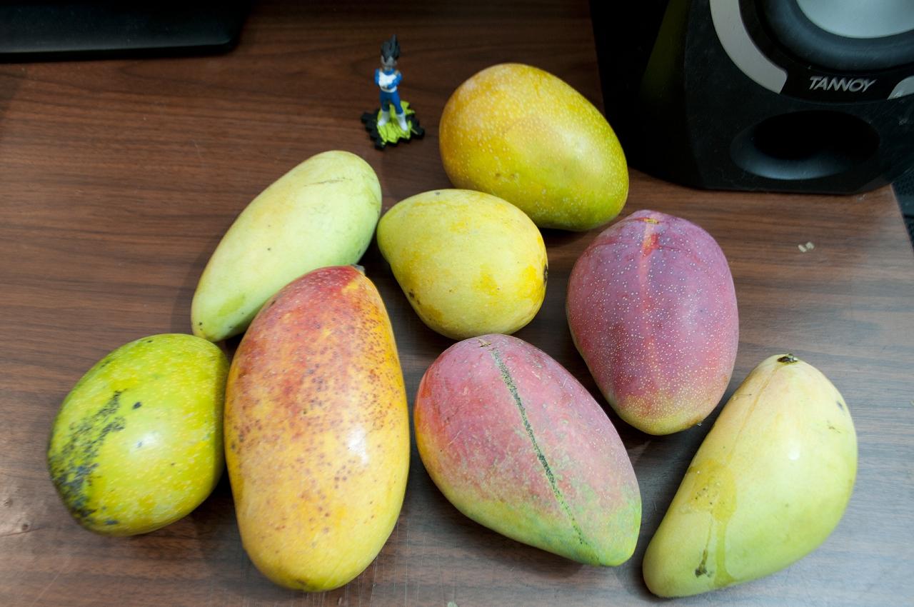 Mango-053015.jpg
