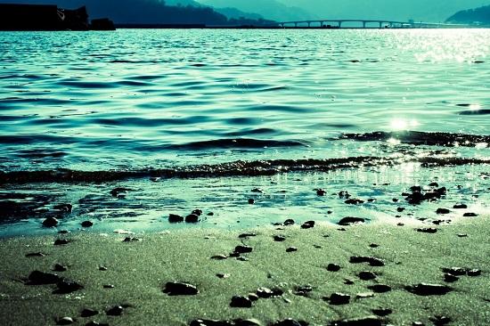 宇佐湾の浜辺より