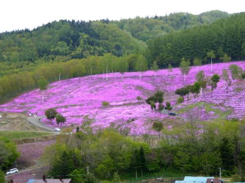 img2015-05-Monbetsu04.jpg