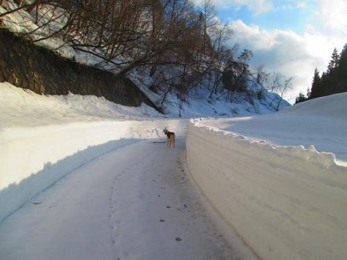 雪壁のむこう側4