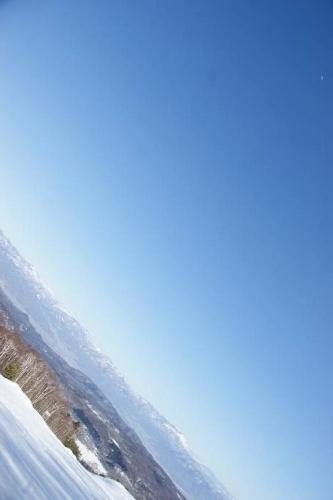 白樺の雪原へ12