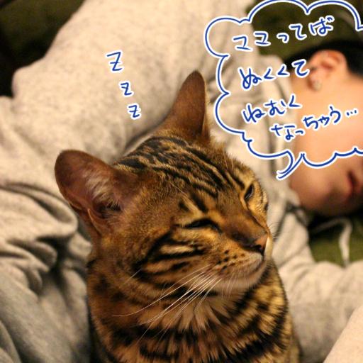 20150318_05.jpg