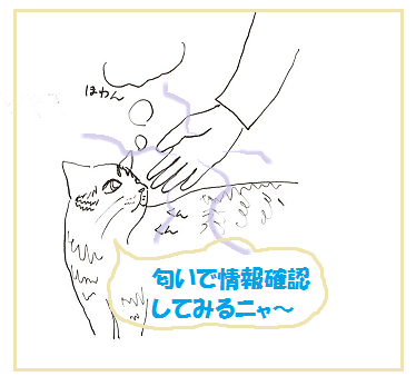 2015011903.png