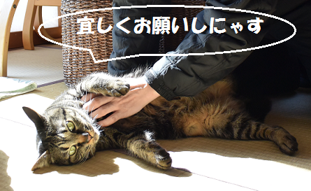 2015030102251.png