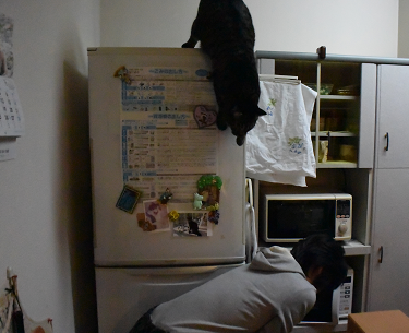 2015030301.png