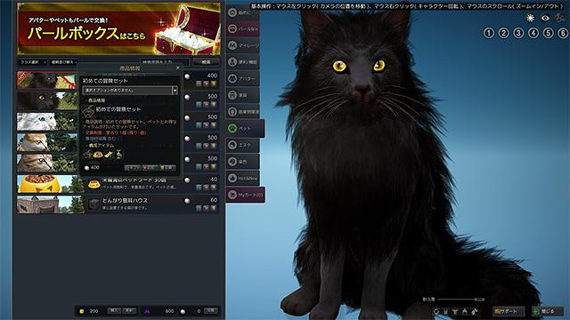 blackdesert_04_07.jpg
