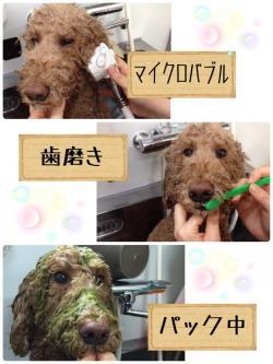 リン風呂_convert_20150710215251