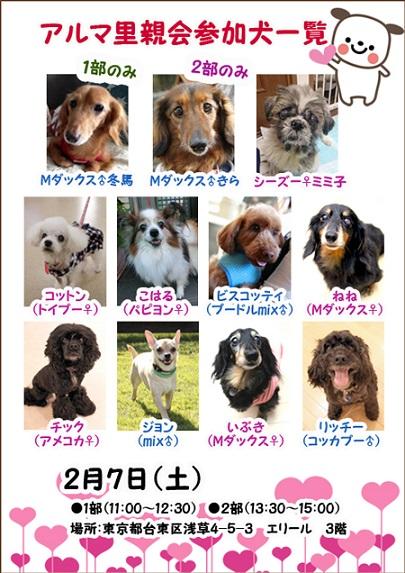 2月7日参加犬