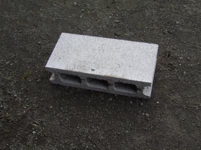 IMGP7555 (640x480)