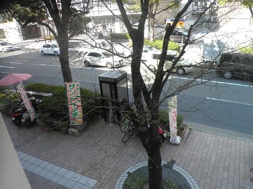 P3270013.jpg