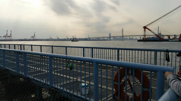神奈川県川崎市海釣り