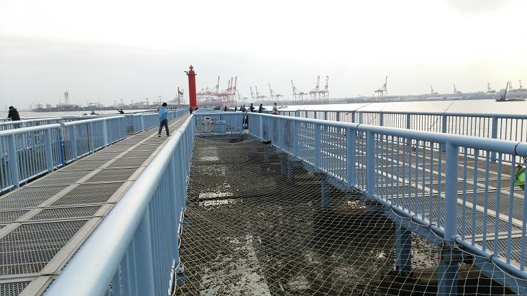 神奈川県川崎市海釣り3