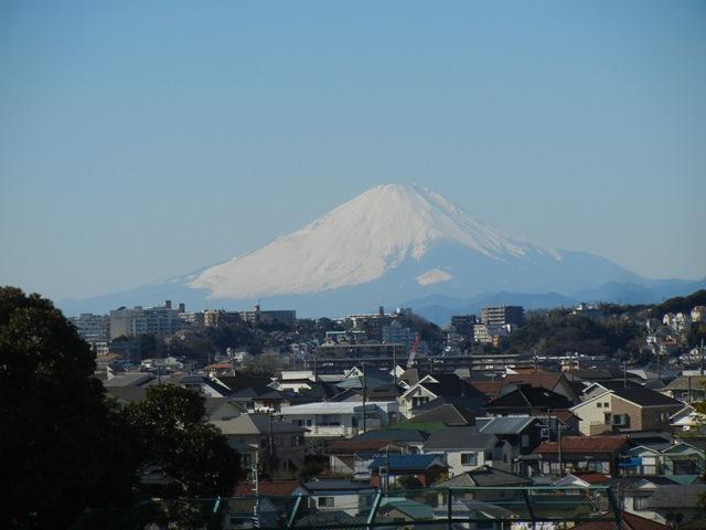 fujisan150113.jpg