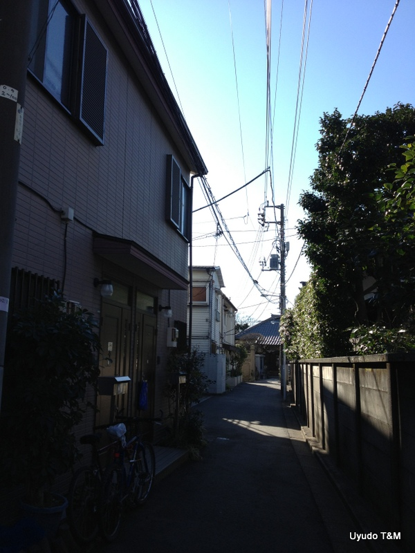 IMG_5363.jpg