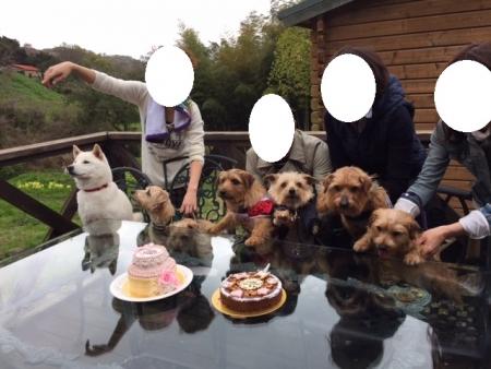 ケーキ前集合