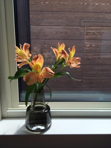 ホルムガード フローラ ベース フラワーベース Holmegaard Flora ベース 12cm