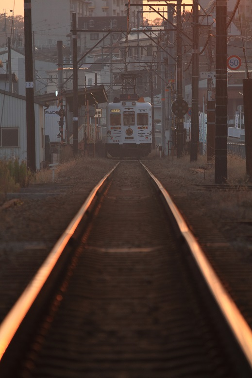 和歌山電鐵、12