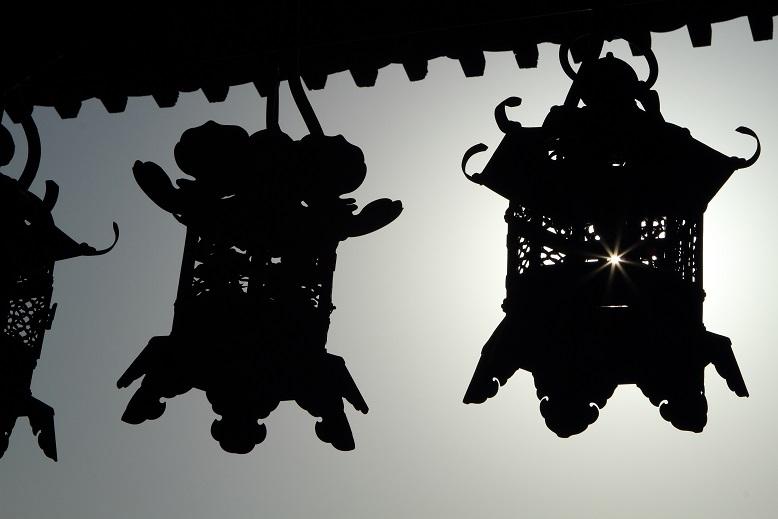 奈良公園、9