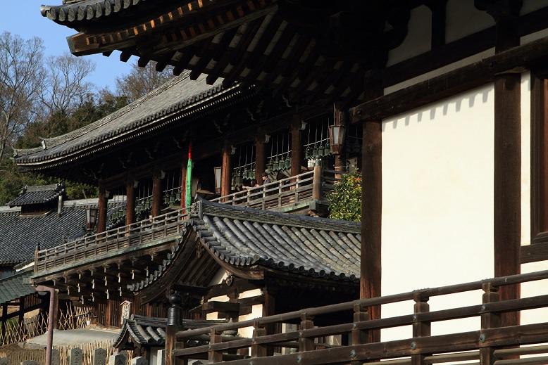奈良公園、13
