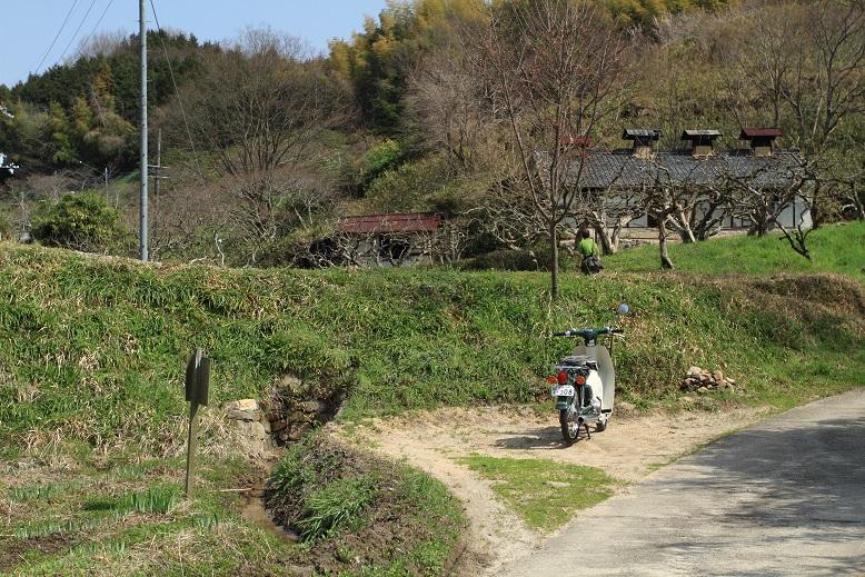 山の辺の道、7