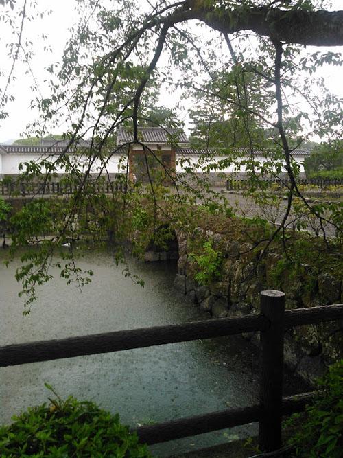 2015_水レモンバル4