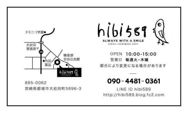 hibi589-2.jpg