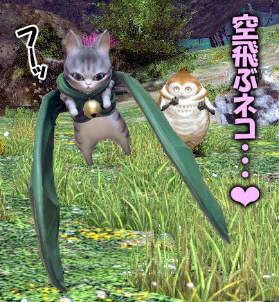 空飛ぶ猫♪