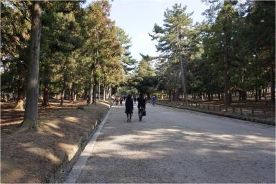 奈良270111_03_02