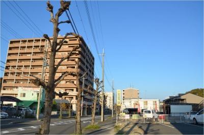 奈良H261122_04_001